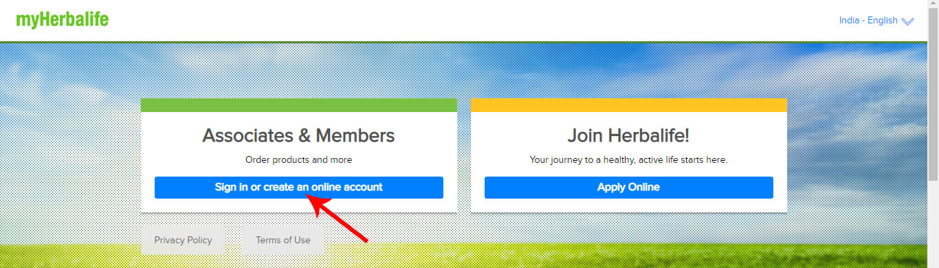 Sign In or Create an Online Account